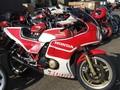大型在庫-CB1100R赤白